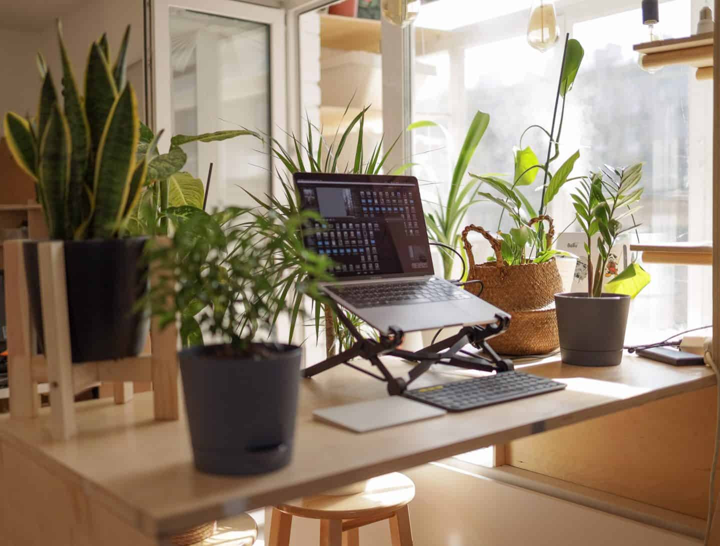 best-jobs-for-travel-lovers-working-remote