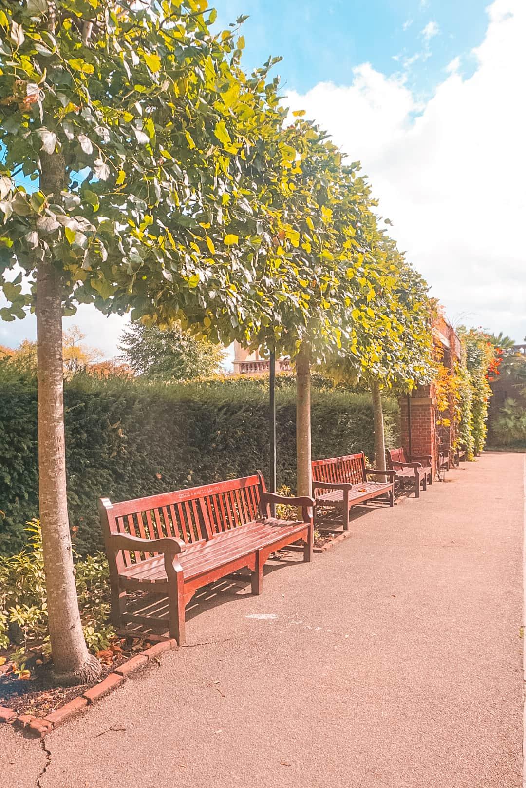Benches-at-Holland-Park.j
