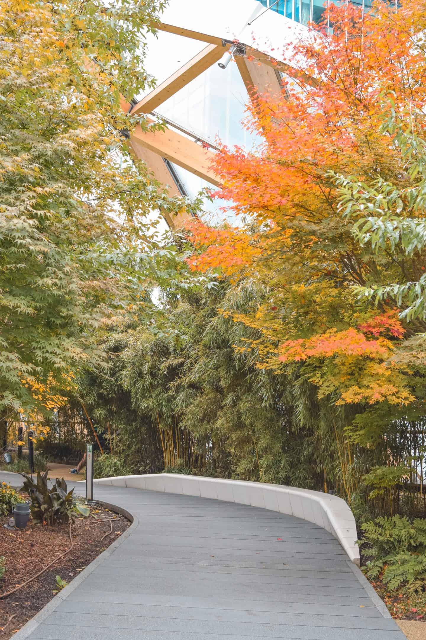 Crossrail Rooftop Garden